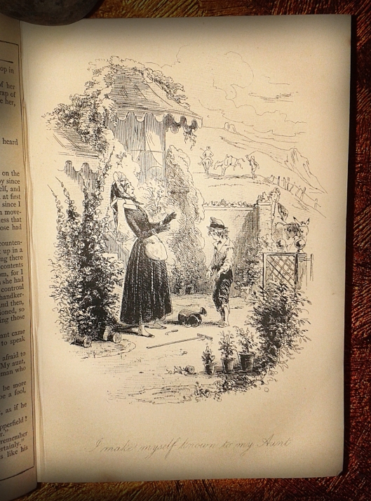 Dickens dc plate 7